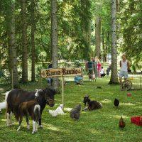 Ranna Rantšo loomad Lossipäeval | Teele Kaeramaa