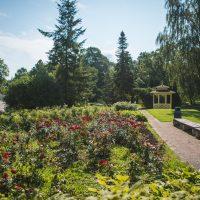 Roosisaar | Liina Laurikainen