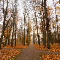 Vana-Põltsamaa mõisa park | Teele Kaeramaa