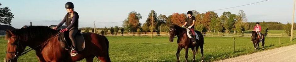 Loopre-Lepiku ratsatalu