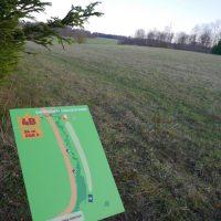 Kuningamäe discgolfi park | Teele Kaeramaa
