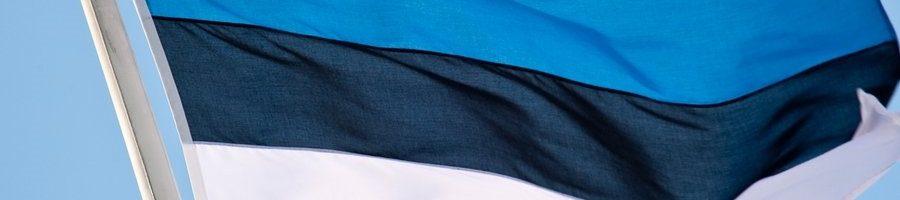 Mida tähendavad Sinu jaoks Eesti lipu värvid?